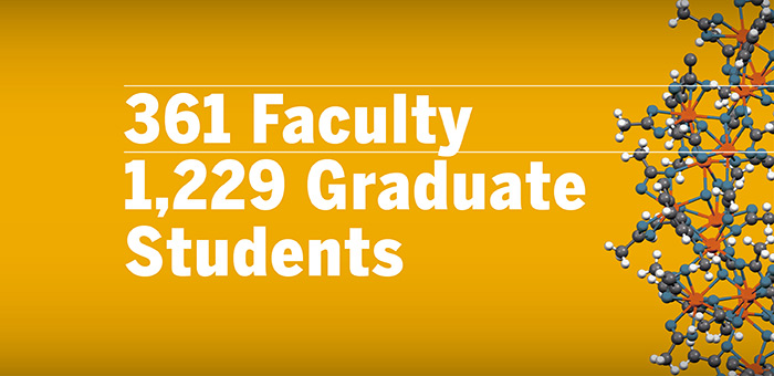 Faculty Stats