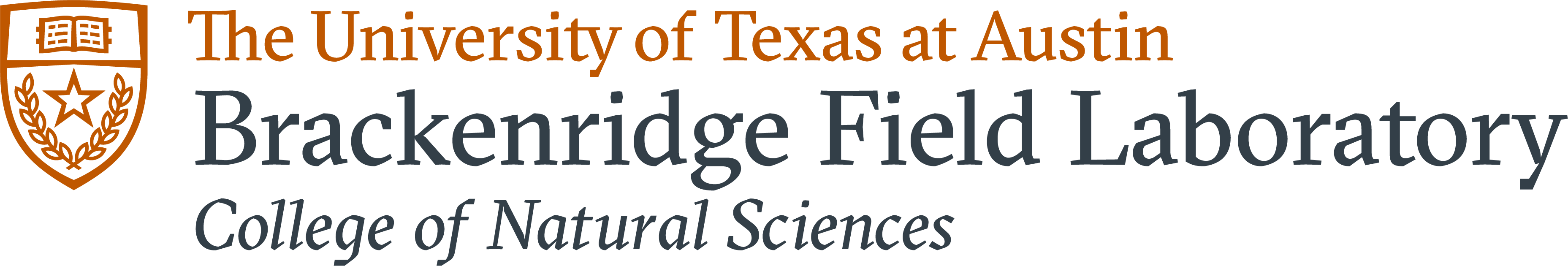 University Of Texas College Of Natural Sciences Career Services