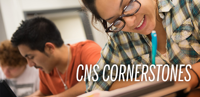 CNS Cornerstones