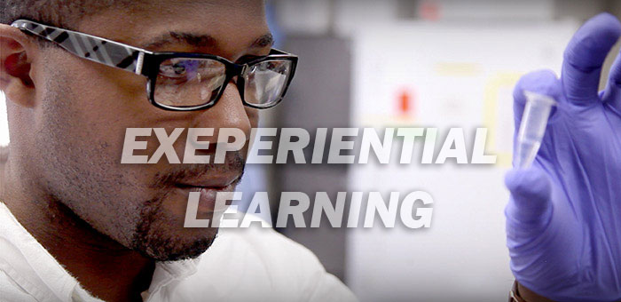 TIDES - Experiential Learning