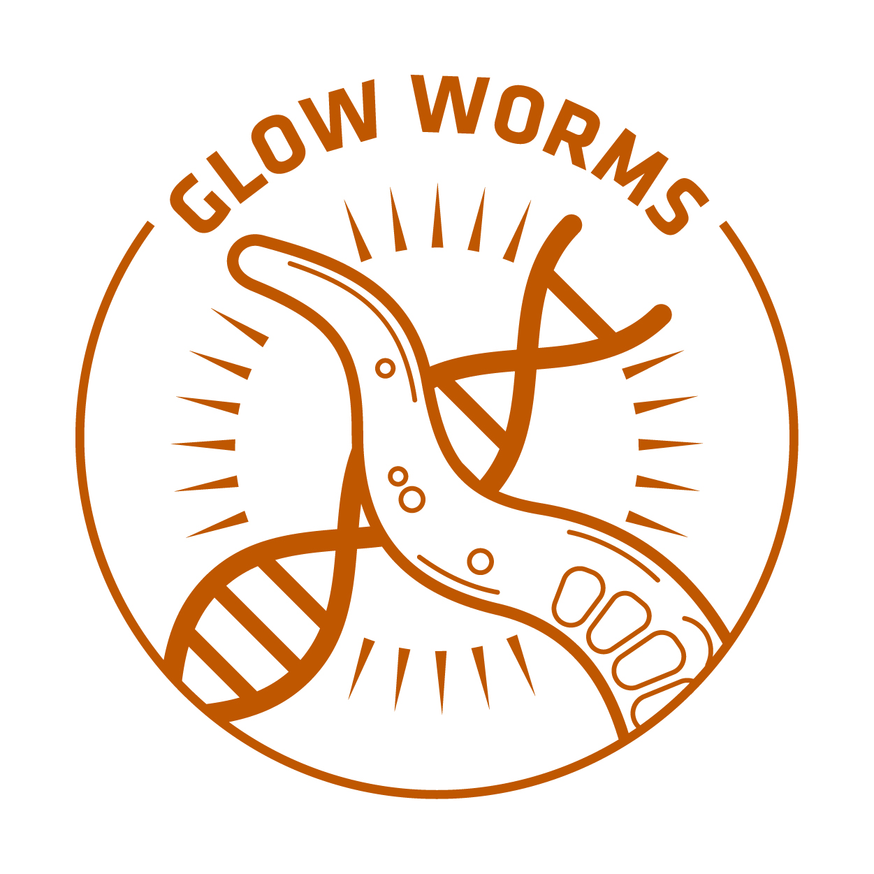 glow worms RGB orange nickname