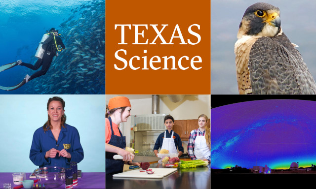 As Remote School for Texas Kids Continues, Try These STEM Learning Resources
