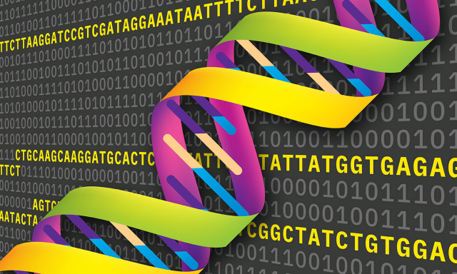 Power of DNA to Store Information Gets an Upgrade