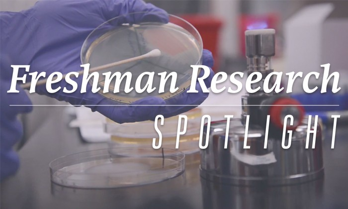Freshman Research Initiative Spotlight: Discovering Antibiotics