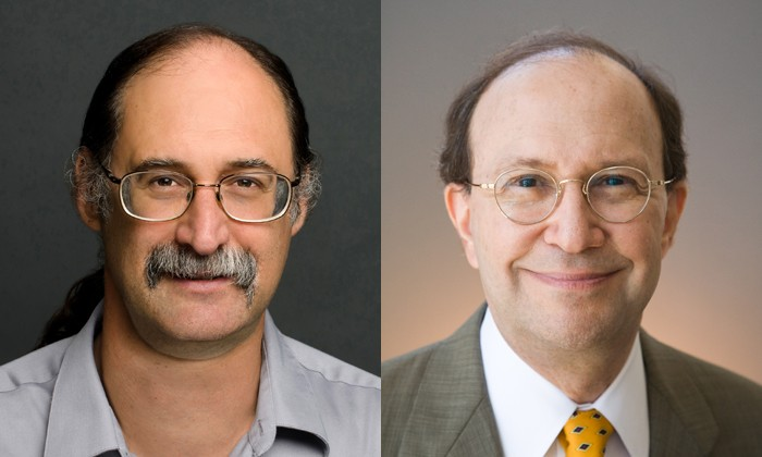 Chemist and Computational Biologist Elected Fellows of National Science Organization