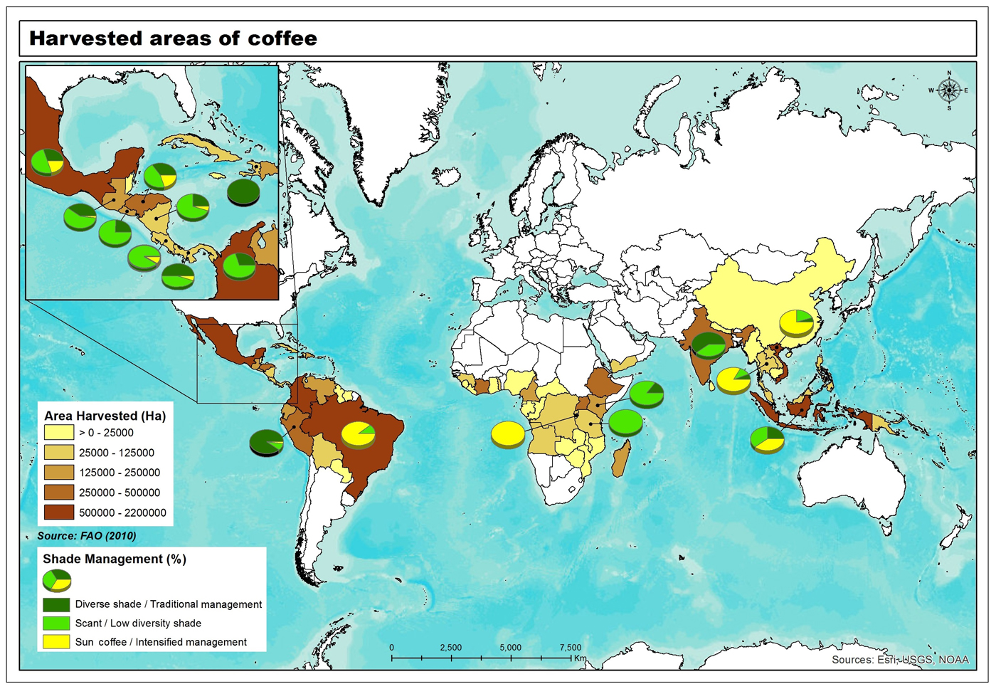 Coffee Management Map