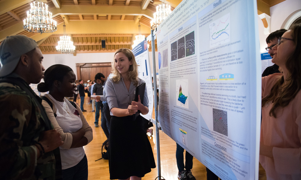 In which fields of Natural Science and Engineering, Can undergraduate students research?
