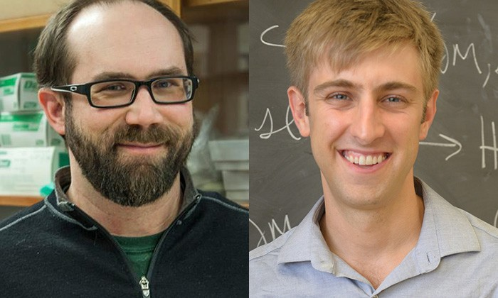 Two Natural Sciences Professors Win Sloan Fellowships