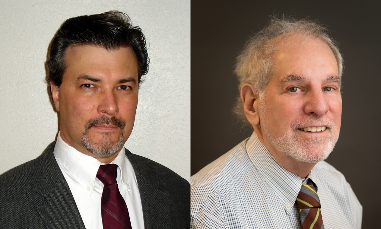 Natural Sciences Faculty Members Named AAAS Fellows