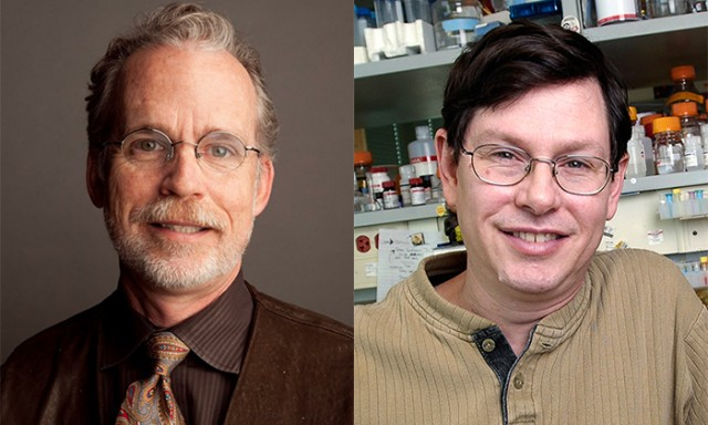 Scientists Named HHMI Professors for Innovation in Undergraduate Education