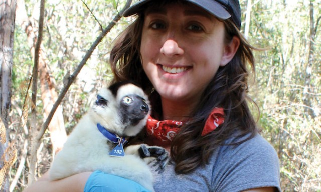 Gut Microbiome Influenced Heavily by Social Circles in Lemurs, UT Study Says