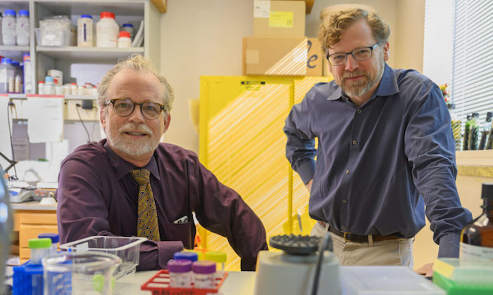 Three Natural Sciences Professors Win UT Invent & Innovate Awards