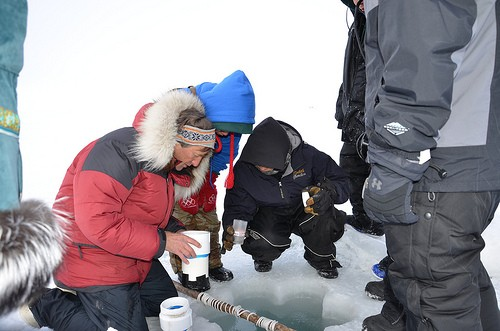 Camp ANWR: Teaching Marine Science at the Top of the World